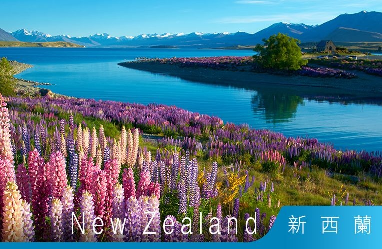 新西蘭移民 – 在新西蘭工作